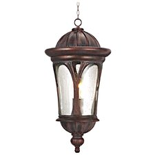 Canada 1 Light Outdoor Hanging Lantern