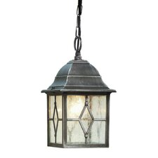LaMeuse 1 Light Outdoor Hanging Lantern