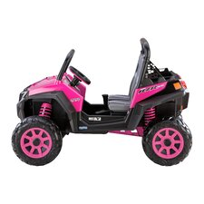 Polaris RZR 900 Car