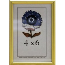 Metal II Picture Frame