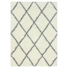 Gray & White Shag Area Rug