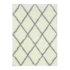 Gray & White Shag Area Rug