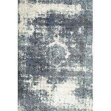 Vintage Lindsy Gray Area Rug