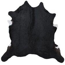 Magali Hand-Woven Black Indoor Area Rug