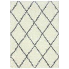 Gray & Off White Shag Area Rug