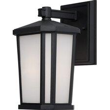 Hampton 1 Light Outdoor Wall Lantern