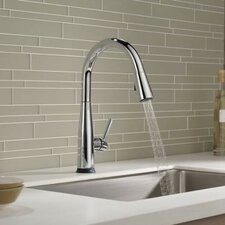 Essa Single Handle Pull Down Kitchen Faucet with Touch2O®