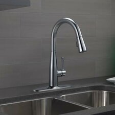 Essa Single Handle Pull Down Kitchen Faucet