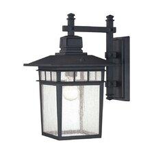 Linden 1 Light Outdoor Wall Lantern