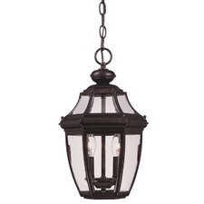 Endorado 2 Light Outdoor Hanging Lantern
