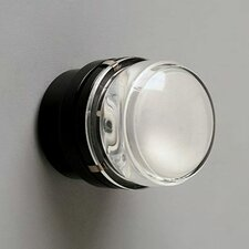 Fresnel LED Wall/Ceiling Sconce