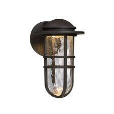 Steampunk 1 Light Outdoor Wall Lantern