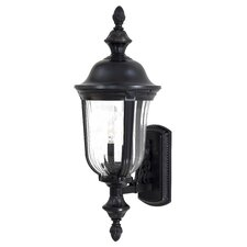Morgan Park 2 Light Outdoor Wall Lantern