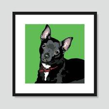 Black Chihuahua Framed Graphic Art