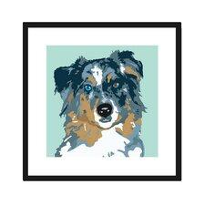 Australian Shepherd Framed Graphic Art