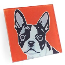 Boston Terrier Coaster (Set of 4)