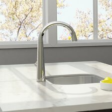 Edgewater Pull-Down Kitchen Faucet with Select Flo