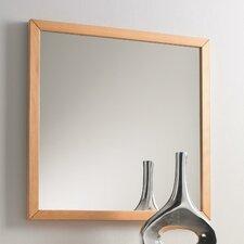 Spiegel Araconda