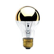 Colored Incandescent Light Bulb (Set of 4)