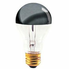 100W 120-Volt Light Bulb (Set of 6)