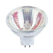 Bi-Pin Halogen Light Bulb (Set of 6)
