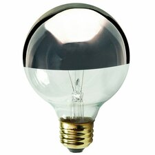 120-Volt Incandescent Light Bulb (Set of 13)