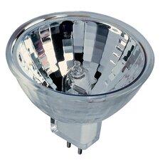 Bi-Pin 65W 12-Volt Halogen Light Bulb (Set of 11)