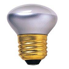 Intermediate 120-Volt (2600K) Incandescent Light Bulb (Set of 9)