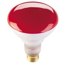75W Red 120-Volt Halogen Light Bulb (Set of 6)