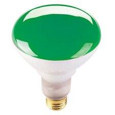 75W Green 120-Volt Halogen Light Bulb (Set of 6)