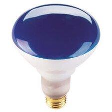 75W Blue 120-Volt Halogen Light Bulb (Set of 6)