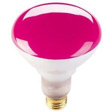 75W Pink 120-Volt Halogen Light Bulb (Set of 6)