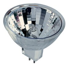 Bi-Pin 12 - Volt (2900K) Halogen Light Bulb (Set of 2)