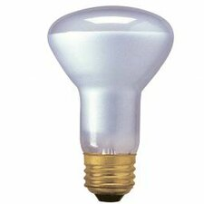 45W120-Volt (2800K) Halogen Light Bulb (Set of 5)