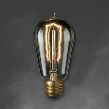 40W 120-Volt ST18 Light Bulb (Pack of 6)