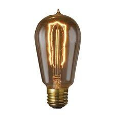 Nostalgic Edison (2200K) Incandescent Light Bulb (Pack of 6)