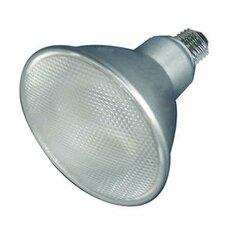 23W 120-Volt (3000K) Compact Fluorescent Light Bulb (Set of 2)