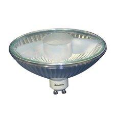 50W (2850K) Halogen Light Bulb (Set of 2)