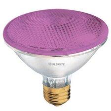 75W Pink 120-Volt Halogen Light Bulb (Set of 3)