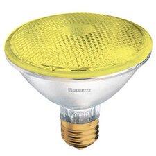 75W Yellow 120-Volt Halogen Light Bulb (Set of 3)