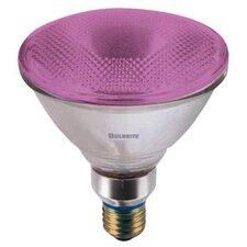 90W Pink 120-Volt Halogen Light Bulb (Set of 2)