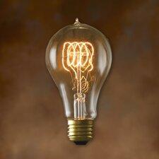 Nostalgic Edison 40W (27000K) Incandescent Light Bulb (Set of 2)