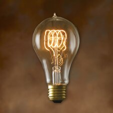 Nostalgic Edison 40W (27000K) Incandescent Light Bulb (Set of 2)