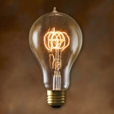 Nostalgic Edison 40W (2700K) Incandescent Light Bulb (Set of 2)