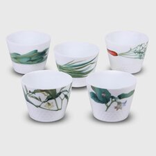 Kyoka Syunsai 5-Piece 7 oz. Japanese Cup Set