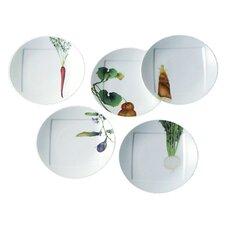 "Kyoka Syunsai 6"" Plate Set (Set of 5)"