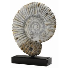 Fossil Shell Sculpture