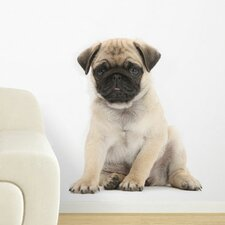 Puppy Love Pug Wall Decal