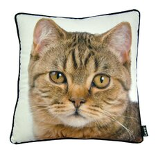 British Cat Throw Pillow