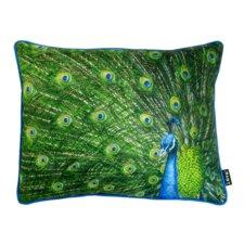 Peacock Feathers Indoor/Outdoor Lumbar Pillow